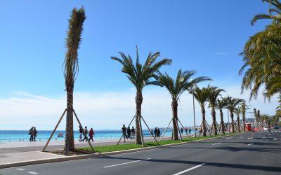 Fuga a Nizza
