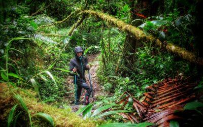 Panama: avventura tra le foreste