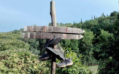 Via Francigena – un viaggio per l'anima da San Miniato a Siena